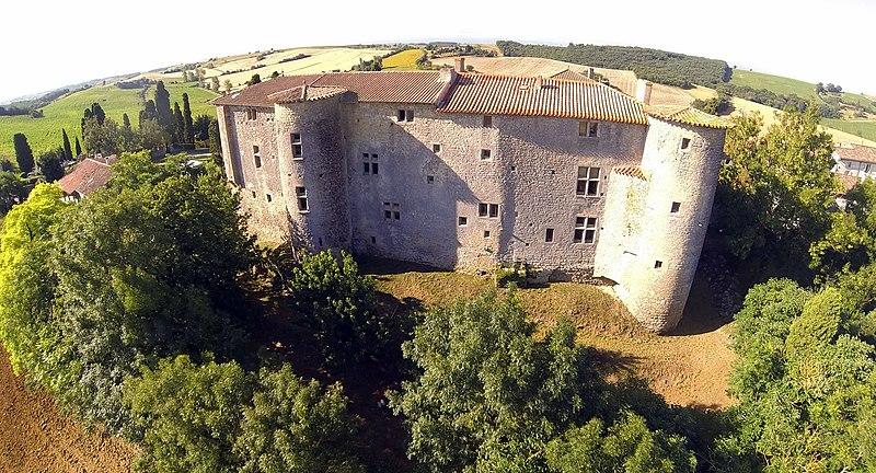 Photo du Monument Historique Château situé à Mézerville