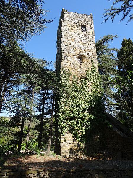 Photo du Monument Historique Tour Carbonac situé à Monze