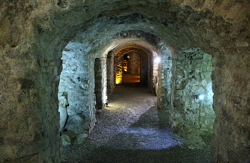Photo du Monument Historique Edifice romain dit Horreum situé à Narbonne