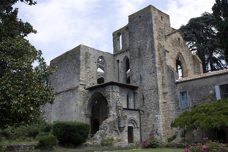 Photo du Monument Historique Abbaye de Villelongue (restes de l'ancienne) situé à Saint-Martin-le-Vieil