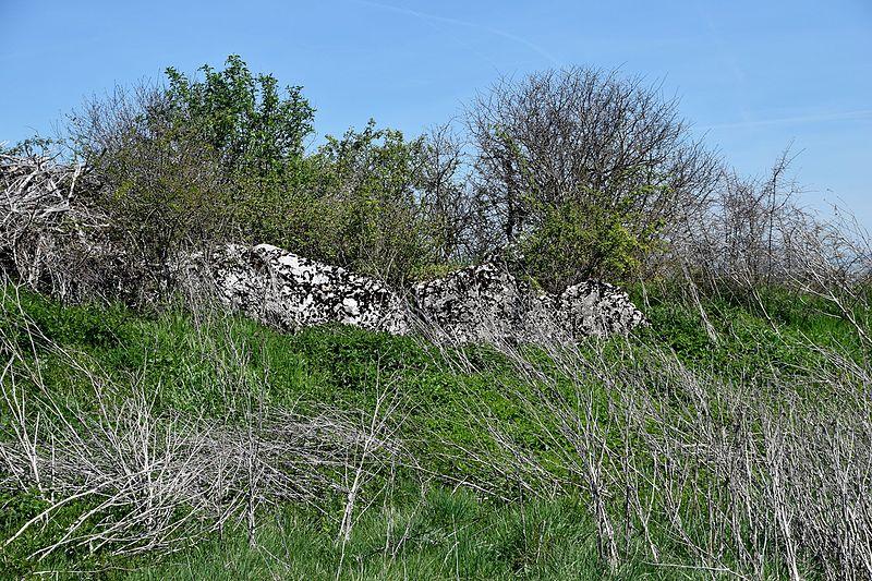 Photo du Monument Historique Dolmen de Saint-Antonin situé à Salles-la-Source