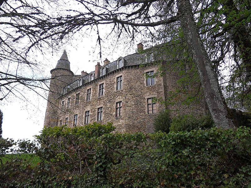 Photo du Monument Historique Château situé à Vézins-de-Lévézou