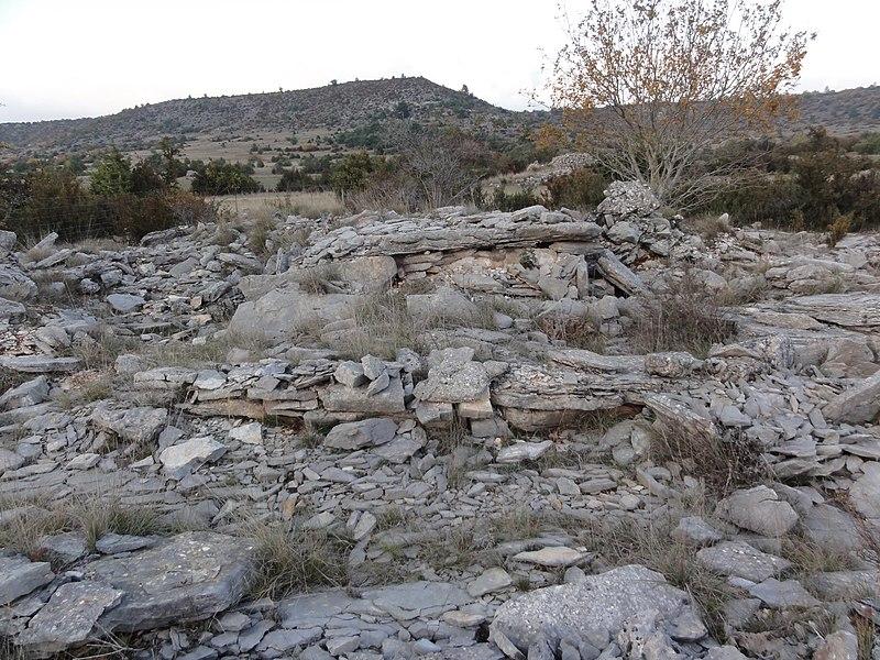 Photo du Monument Historique Site archéologique du dolmen 3 de Saint-Martin-du-Larzac situé à Millau