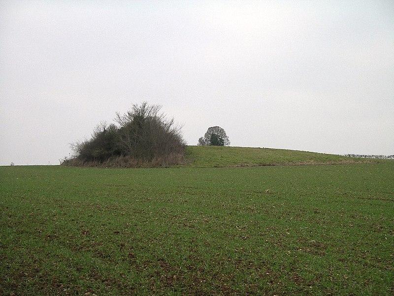 Photo du Monument Historique Tumulus néolithique dit la Butte du Hu situé à Condé-sur-Ifs