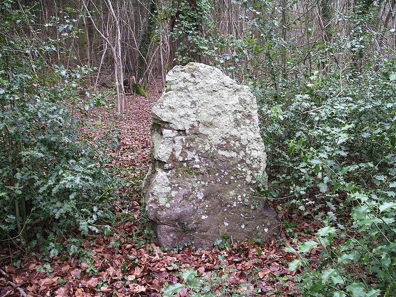Photo du Monument Historique Menhir dit La Pierre Tourneresse, situé dans le parc du château d'Outrelaize situé à Gouvix