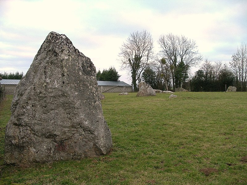 Photo du Monument Historique Alignement de neuf menhirs de la Plumaudière situé à Montchauvet