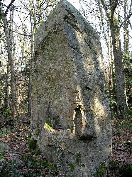Photo du Monument Historique Menhir dit la Roche Piquée situé à Saint-Germain-le-Vasson