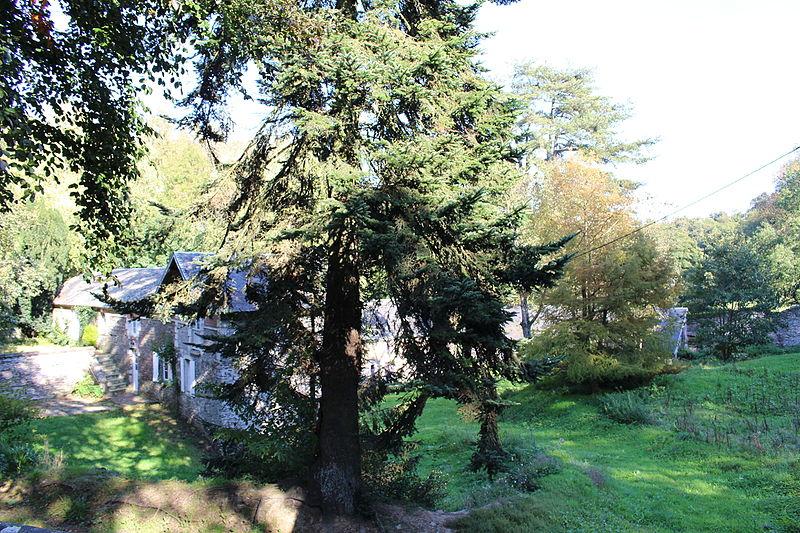 Photo du Monument Historique Domaine de Castillon situé à Castillon