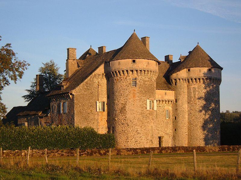 Photo du Monument Historique Château de la Vigne situé à Ally
