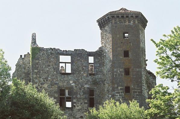 Photo du Monument Historique Ruines du château fort de Branzac situé à Pleaux