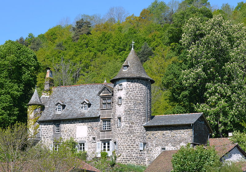 Photo du Monument Historique Château d'Oyez situé à Saint-Simon