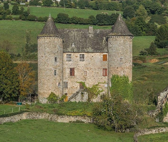 Photo du Monument Historique Château situé à Sénezergues