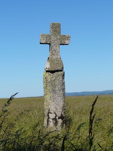 Photo du Monument Historique Menhir christianisé de La Croix-Grosse situé à Sériers