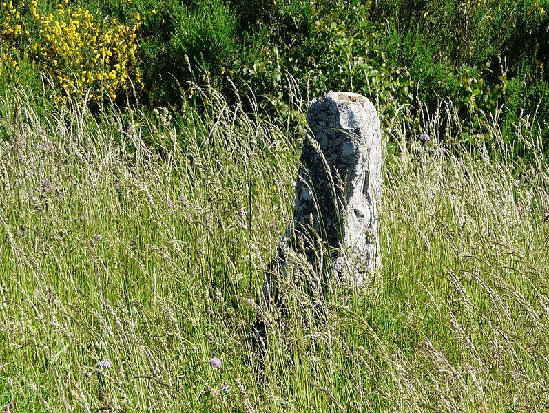 Photo du Monument Historique Menhir de Bargueyrac ou de la Pierre Plantade situé à Sériers