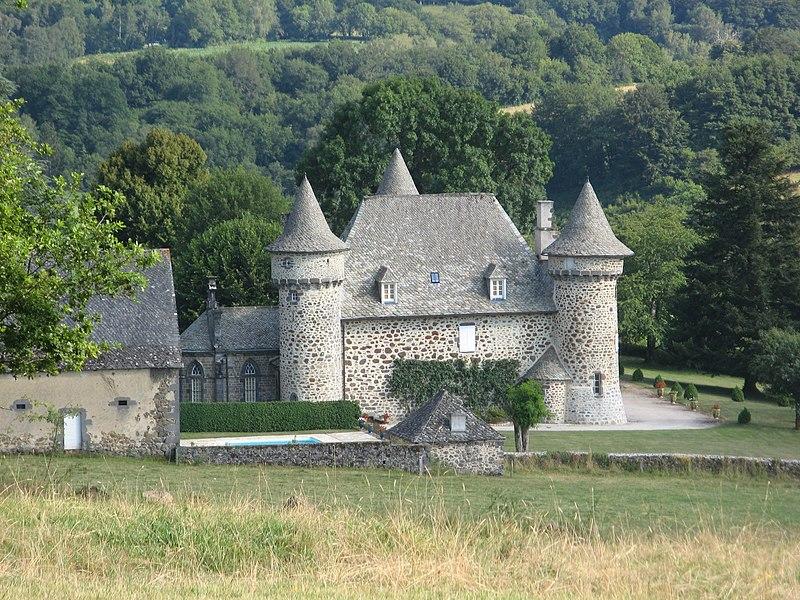 Photo du Monument Historique Château situé à Sourniac