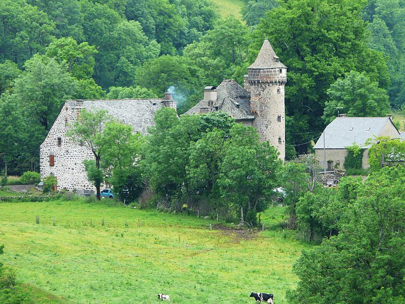 Photo du Monument Historique Château d'Escorolles situé à Cheylade