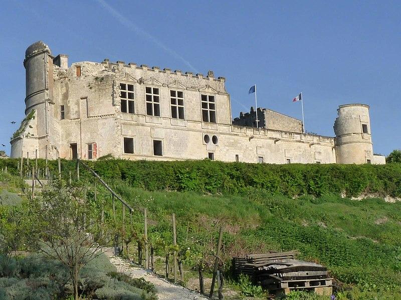 Photo du Monument Historique Château situé à Bouteville