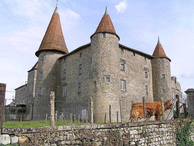 Photo du Monument Historique Château situé à Chillac