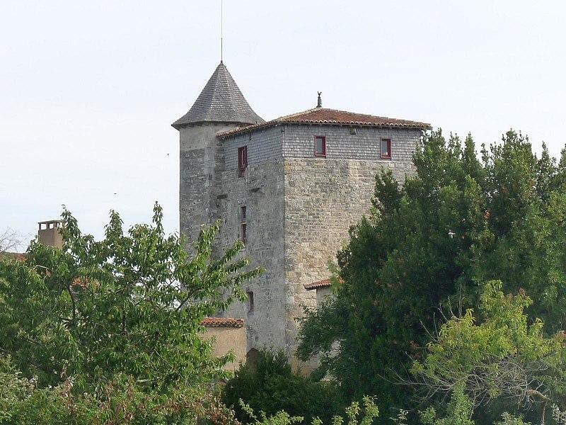 Photo du Monument Historique Restes du logis de Sigogne situé à Coulgens