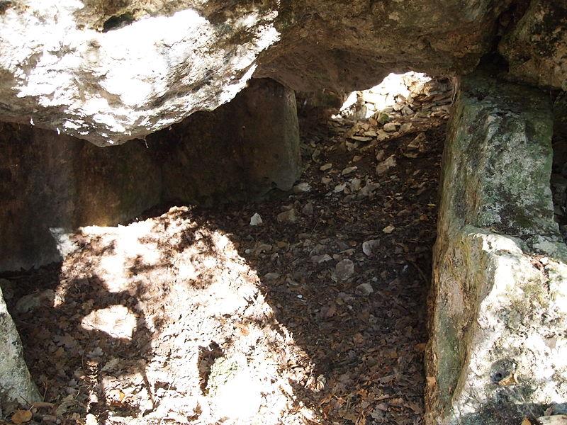 Photo du Monument Historique Dolmen dans le tumulus dit La Motte-de-la-Garde situé à Luxé