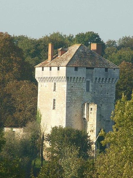 Photo du Monument Historique Château des Pins situé à Les Pins