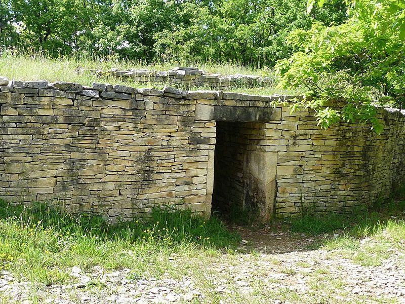 Photo du Monument Historique Dolmen dit de la Boixe situé à Vervant