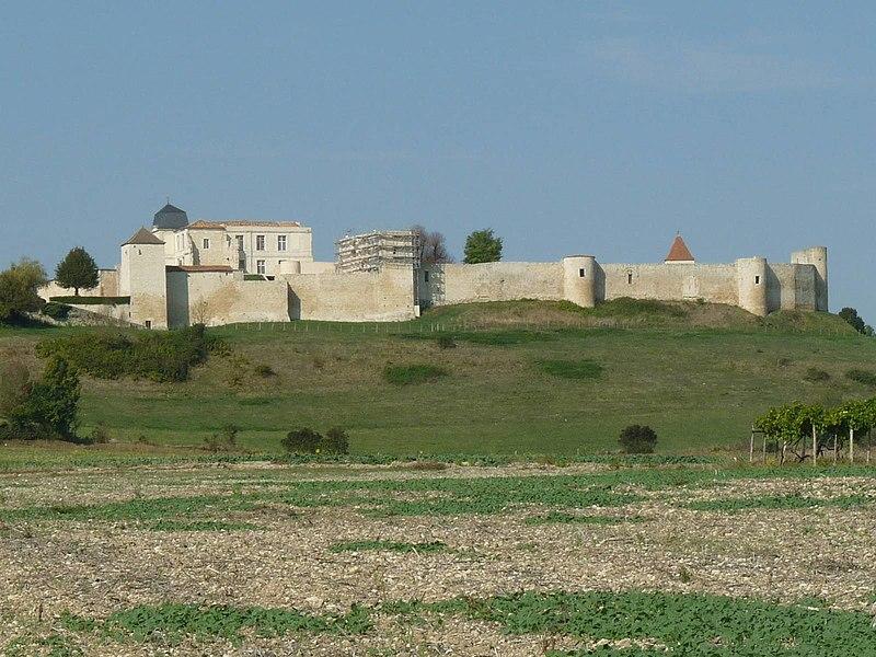 Photo du Monument Historique Château situé à Villebois-Lavalette