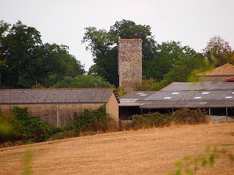 Photo du Monument Historique Donjon de la Chaise situé à Vouthon