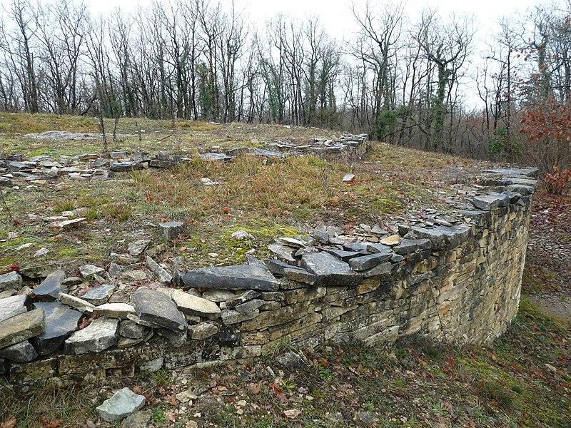 Photo du Monument Historique Nécropole de la Boixe situé à Vervant