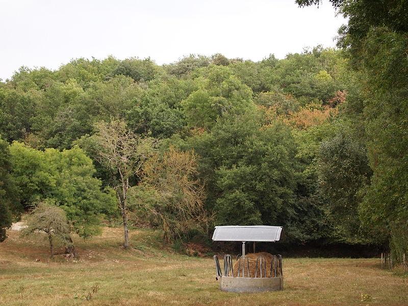 Photo du Monument Historique Ensemble des gisements situé à Vilhonneur