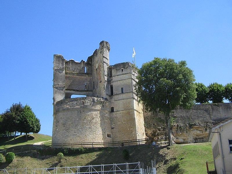 Photo du Monument Historique Château situé à Montguyon