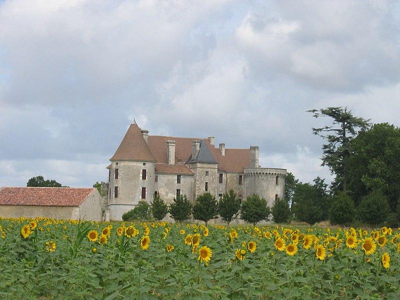 Photo du Monument Historique Château situé à Rioux