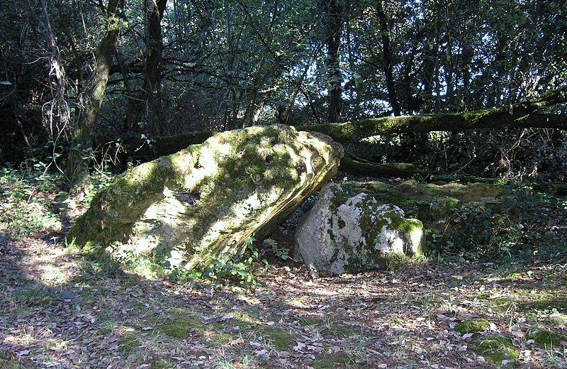 Photo du Monument Historique Dolmen effondré appelé La Pierre Levée de Berthe-grille situé à Sablonceaux
