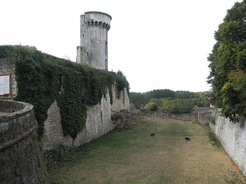Photo du Monument Historique Château de Taillebourg situé à Taillebourg