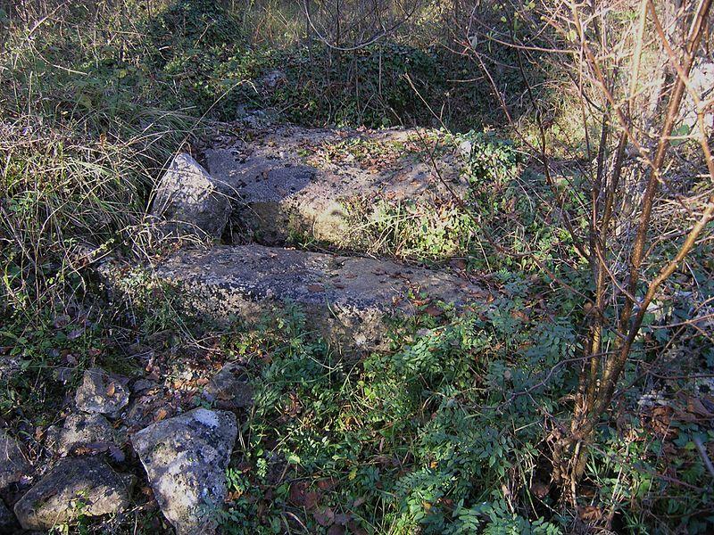 Photo du Monument Historique Dolmen du Bois de la Grosse Pierre situé à Sainte-Radegonde