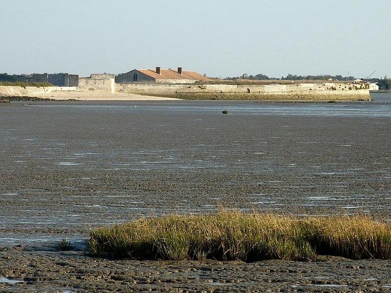 Photo du Monument Historique Fort Lapointe ou fort Vasou situé à Fouras