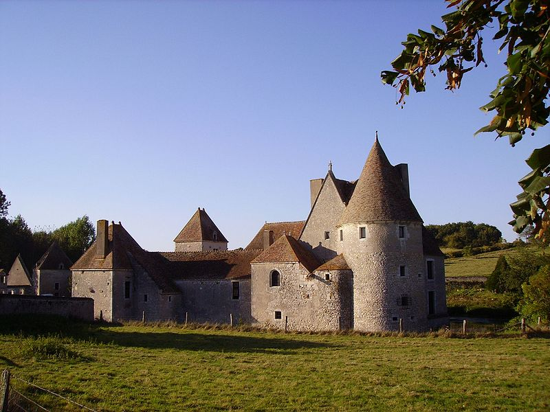 Photo du Monument Historique Château de Buranlure situé à Boulleret