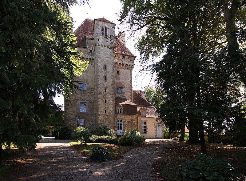 Photo du Monument Historique Château situé à Menetou-Couture
