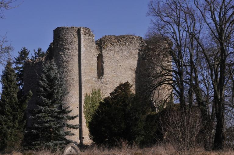 Photo du Monument Historique Restes du donjon de Jouy situé à Sancoins