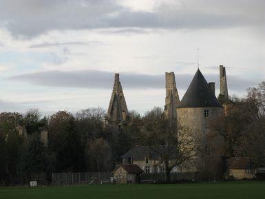 Photo du Monument Historique Restes du château de Bois-Sire-Amé situé à Vorly