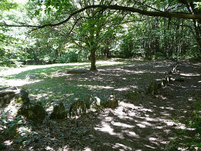 Photo du Monument Historique Cromlech du Puy de Pauliac situé à Aubazines