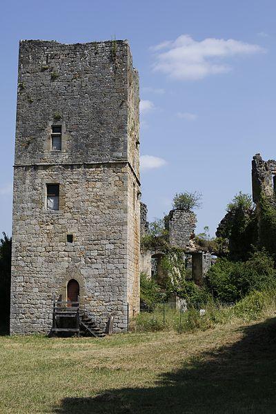 Photo du Monument Historique Château de Couzages situé à Chasteaux