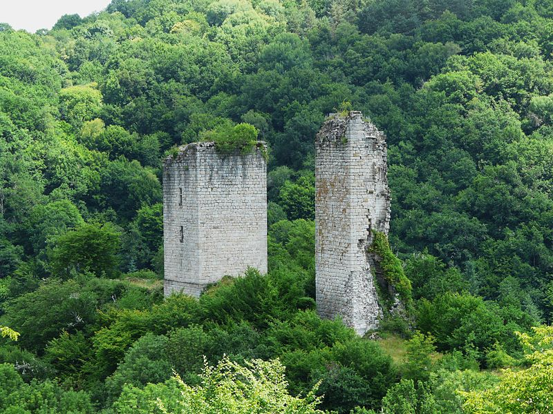 Photo du Monument Historique Ruines des tours de Carbonnières situé à Goulles