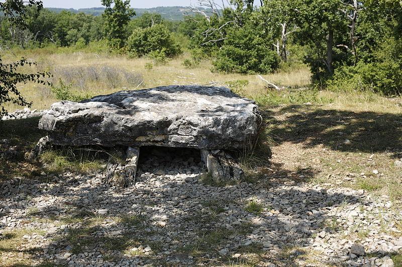 Photo du Monument Historique Dolmen de la Chassagne situé à Saint-Cernin-de-Larche