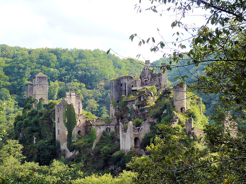Photo du Monument Historique Restes du château de Merle situé à Saint-Geniez-ô-Merle