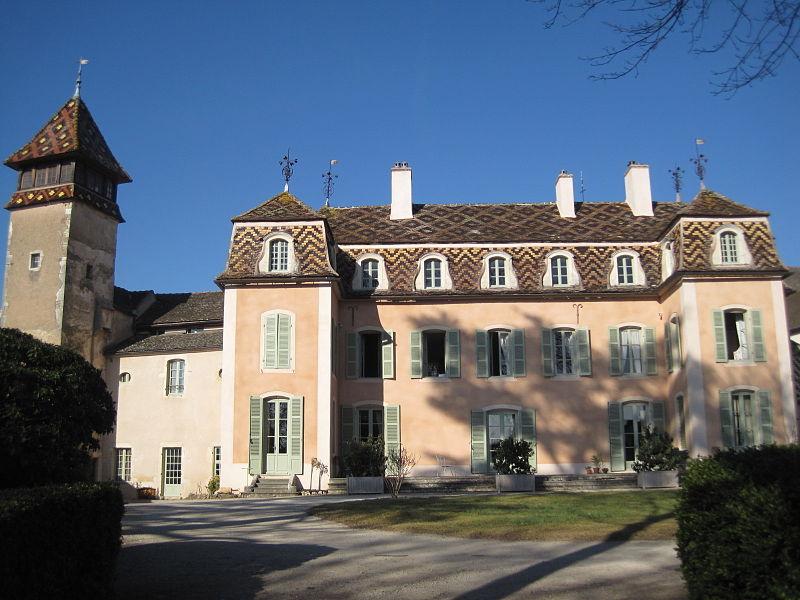 Photo du Monument Historique Château situé à Monthelie