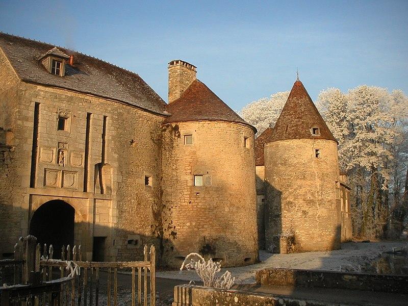 Photo du Monument Historique Château de la Romagne situé à Saint-Maurice-sur-Vingeanne
