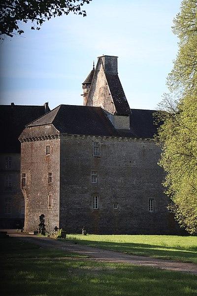 Photo du Monument Historique Château (vieux) situé à Thenissey