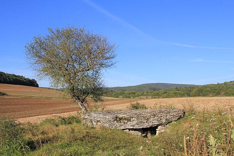 Photo du Monument Historique Dolmen dit La Pierre-Brûlée situé à Volnay