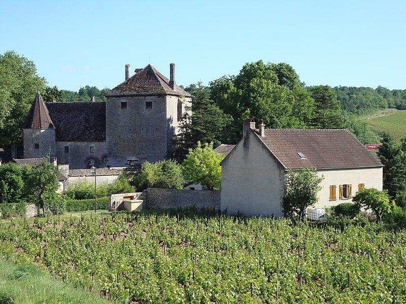 Photo du Monument Historique Château de Gamay situé à Saint-Aubin